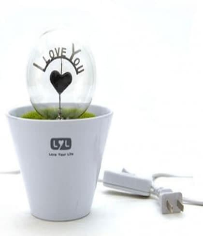 LED Flower Pot Night Light